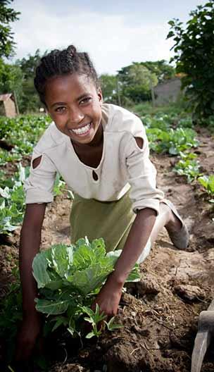 Ethiopia Food Agriculture