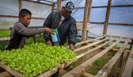 Honduras EconomicDevelop
