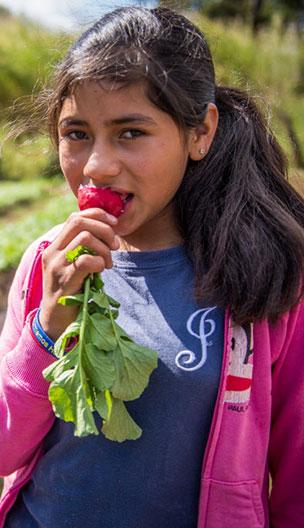 Honduras FoodAndAgriculture