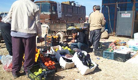 Syria Food